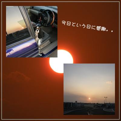 c0145250_11425188.jpg