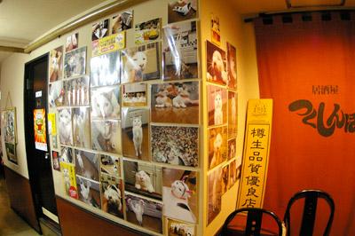 渋谷中央街「つくしんぼ」ラストスパート!!!_a0028451_17155521.jpg