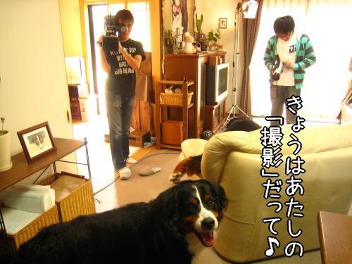 f0187974_15254921.jpg