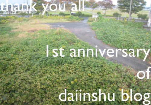 大因州ブログ1周年!Happy Birthday to my blog!_f0157387_15595397.jpg