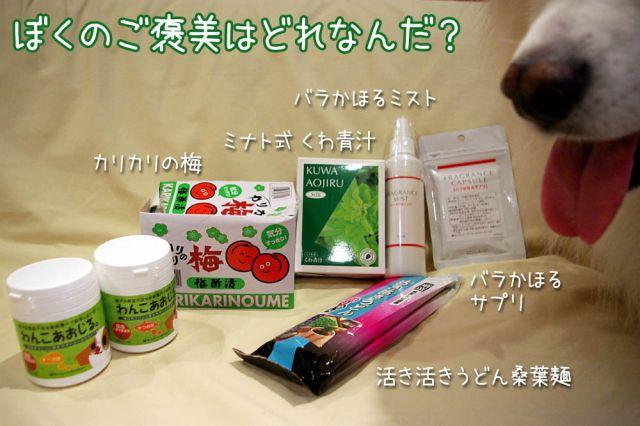 あおじるモニター_c0062832_18285426.jpg