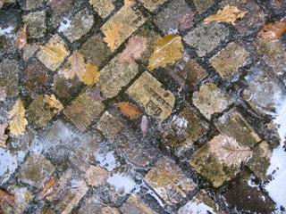 雨の金曜日_b0147051_2247416.jpg