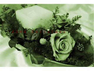 f0150881_028675.jpg