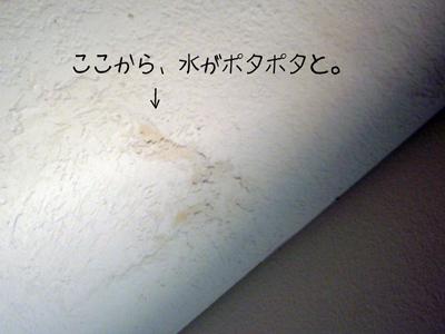 d0144727_1181062.jpg