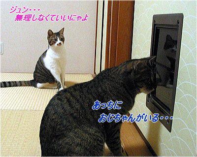 b0097848_18552990.jpg