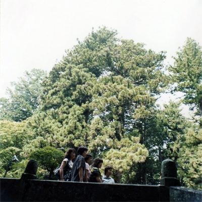 山中湖 沙絵_c0098759_1132257.jpg