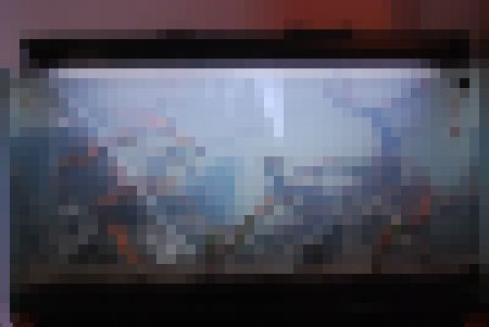d0131061_20503419.jpg