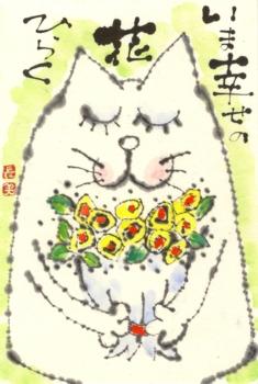 ねこ花束・Mちゃんおめでとう_a0030594_2147742.jpg