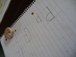 ユキちゃんと学校の宿題_f0106597_2219755.jpg