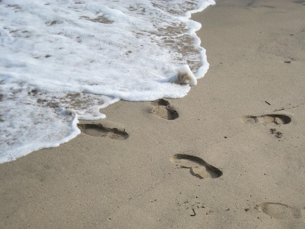 海辺で    _f0141609_22265451.jpg