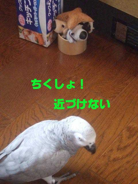 c0133013_14371043.jpg