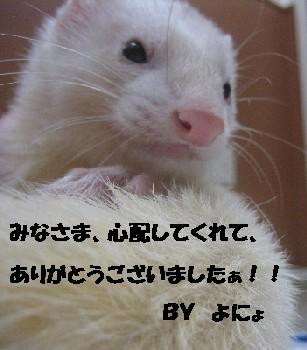 f0191716_18484557.jpg