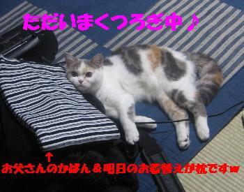 f0191716_18492244.jpg