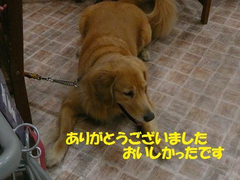 f0114128_2081042.jpg