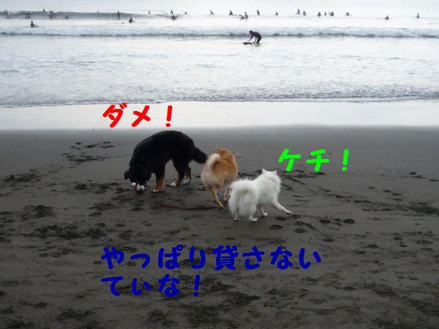 a0108146_15191431.jpg