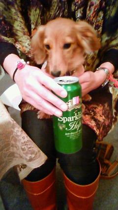 ビール好きな犬!_f0191649_1842416.jpg