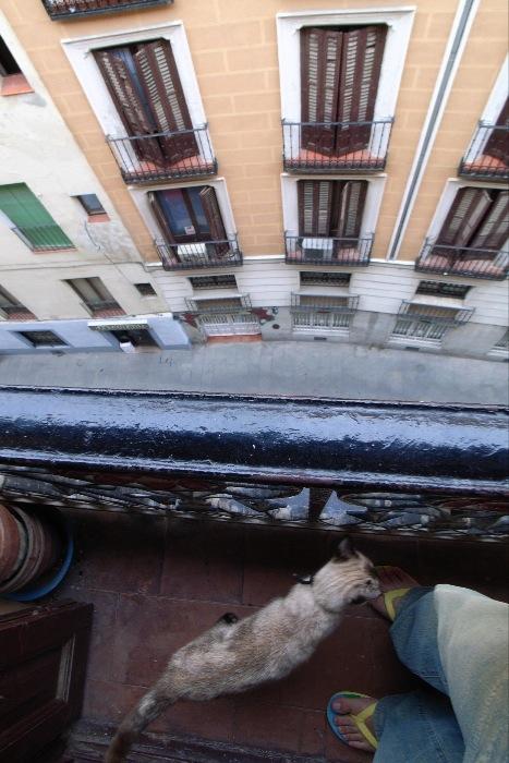 マドリードへ_e0100152_18355689.jpg
