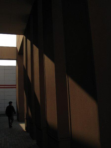 午後の光と遊ぶ_d0107372_23161651.jpg