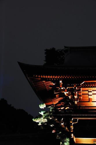 アカリウム〜明治神宮御社殿50年記念_d0023111_13435877.jpg