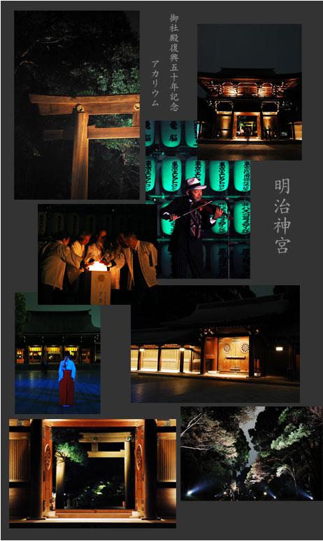 アカリウム〜明治神宮御社殿50年記念_d0023111_13573387.jpg