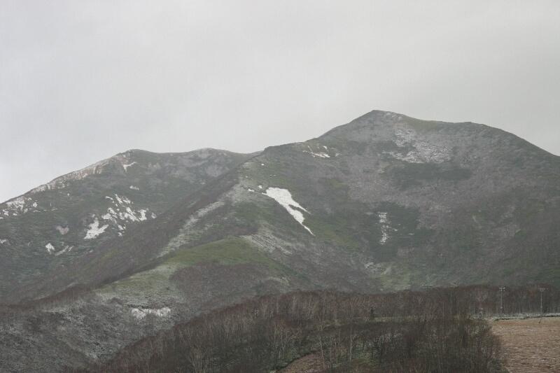 初雪???_d0070814_7533272.jpg