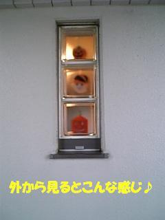 f0182121_719369.jpg