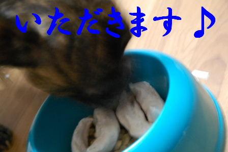 c0130324_2259529.jpg