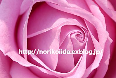 d0086230_13304846.jpg
