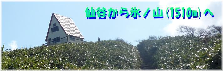 b0036638_2322994.jpg