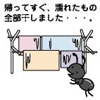 手作り市_出店報告 10/26上賀茂_f0195352_10405030.jpg