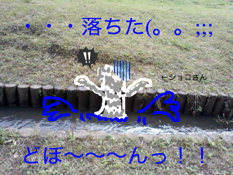 c0177261_10422598.jpg