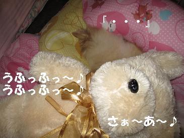 c0179136_21214734.jpg