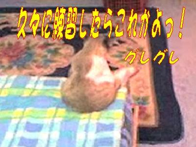e0022736_11503357.jpg
