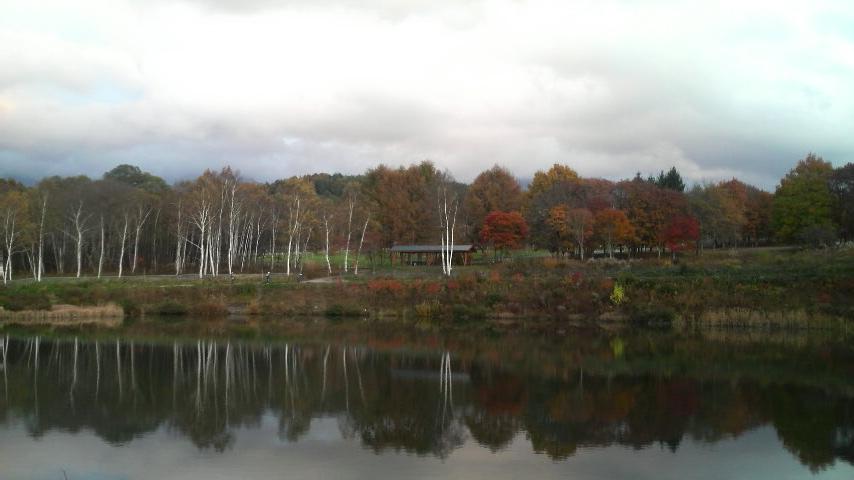 秋を探しに_f0028256_3491319.jpg