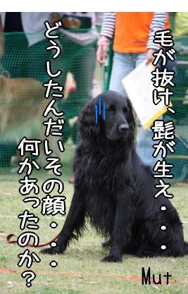 f0187974_22121691.jpg