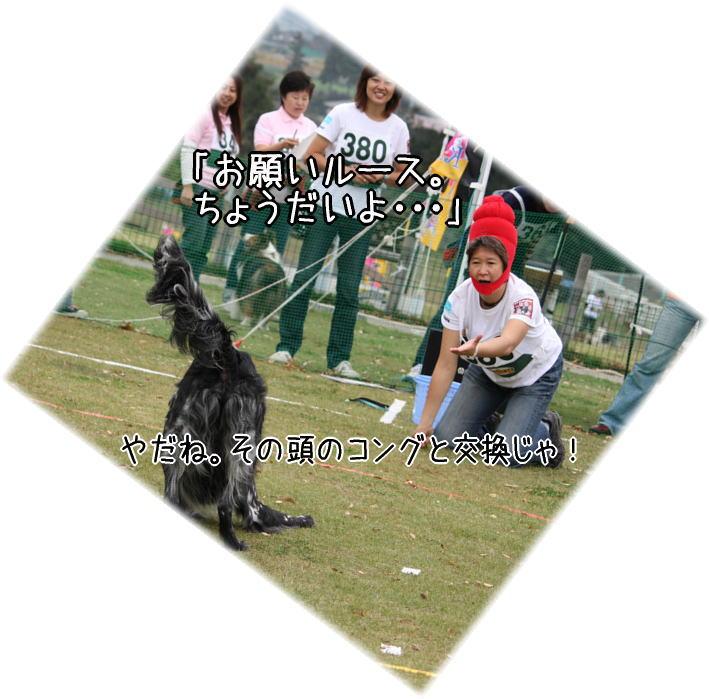 f0187974_22151398.jpg