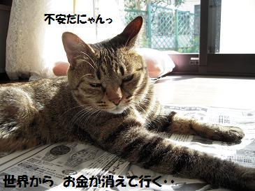 c0139488_1521324.jpg