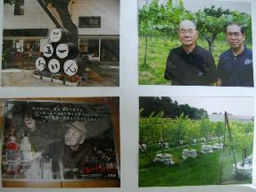 五一爺さんの造ったワイン_f0055803_13254647.jpg