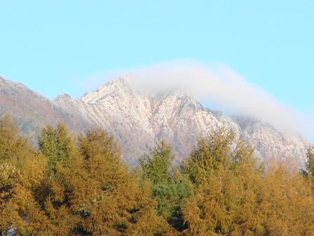 霜が降りた朝の散歩_f0064906_17384812.jpg