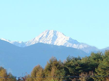 霜が降りた朝の散歩_f0064906_17393826.jpg