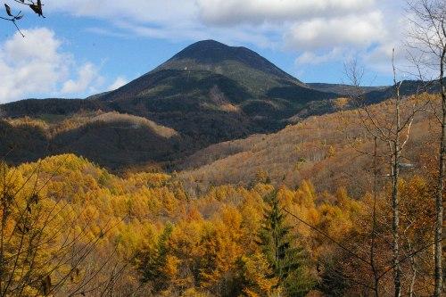 八ヶ岳の冠雪と唐松の輝き_d0102327_2383233.jpg