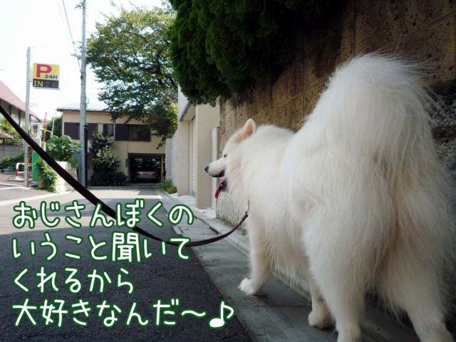 ぐるぐるお散歩_c0062832_1847355.jpg