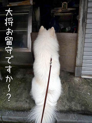 ぐるぐるお散歩_c0062832_18474913.jpg