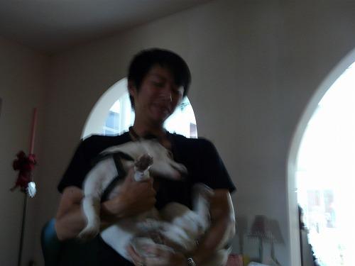 犬を売られました_b0093577_19144216.jpg