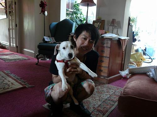 犬を売られました_b0093577_19152750.jpg