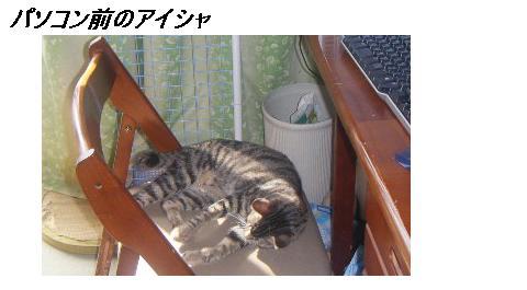 b0112380_1843031.jpg