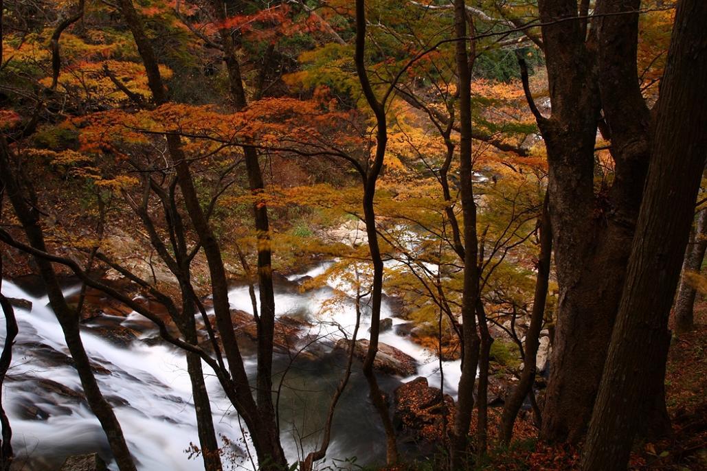 福島県 「江竜田の滝と紅葉」 在庫から_e0143883_228346.jpg