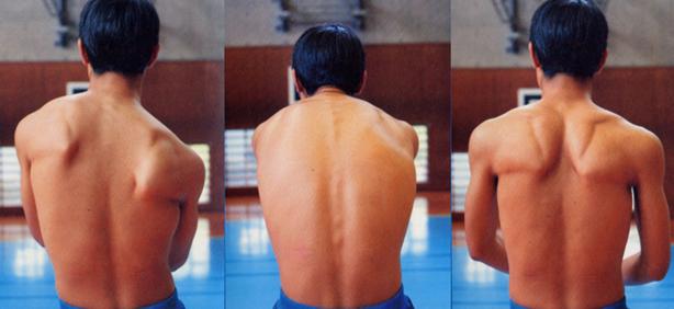 肩 甲骨 柔軟