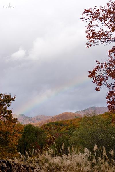 紅葉と虹!_c0048494_18353885.jpg