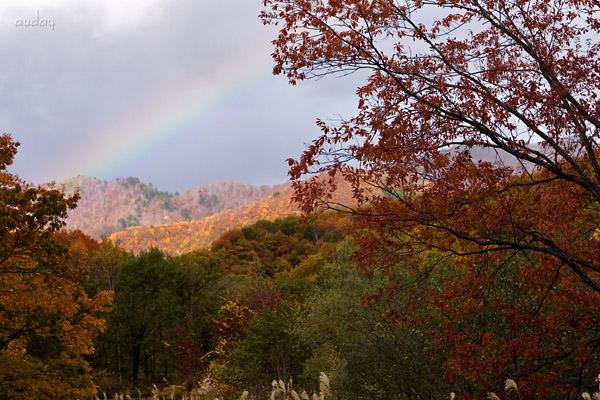 紅葉と虹!_c0048494_1836639.jpg
